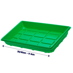 Seed Tray 50-60cm